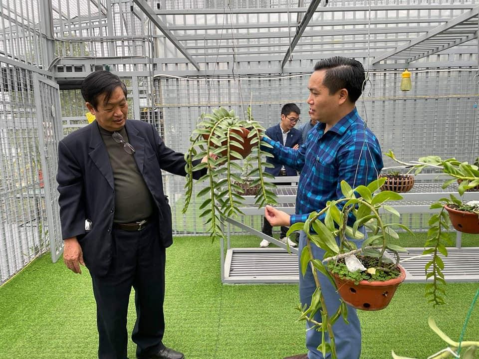 Cần tăng cường liên kết để phát triển ngành hoa lan Việt Nam - Ảnh 2
