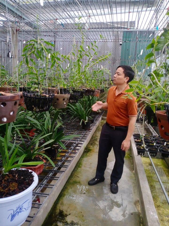 Ông chủ vườn lan 7X Mạnh Hùng và thành công từ đam mê hoa lan - Ảnh 1