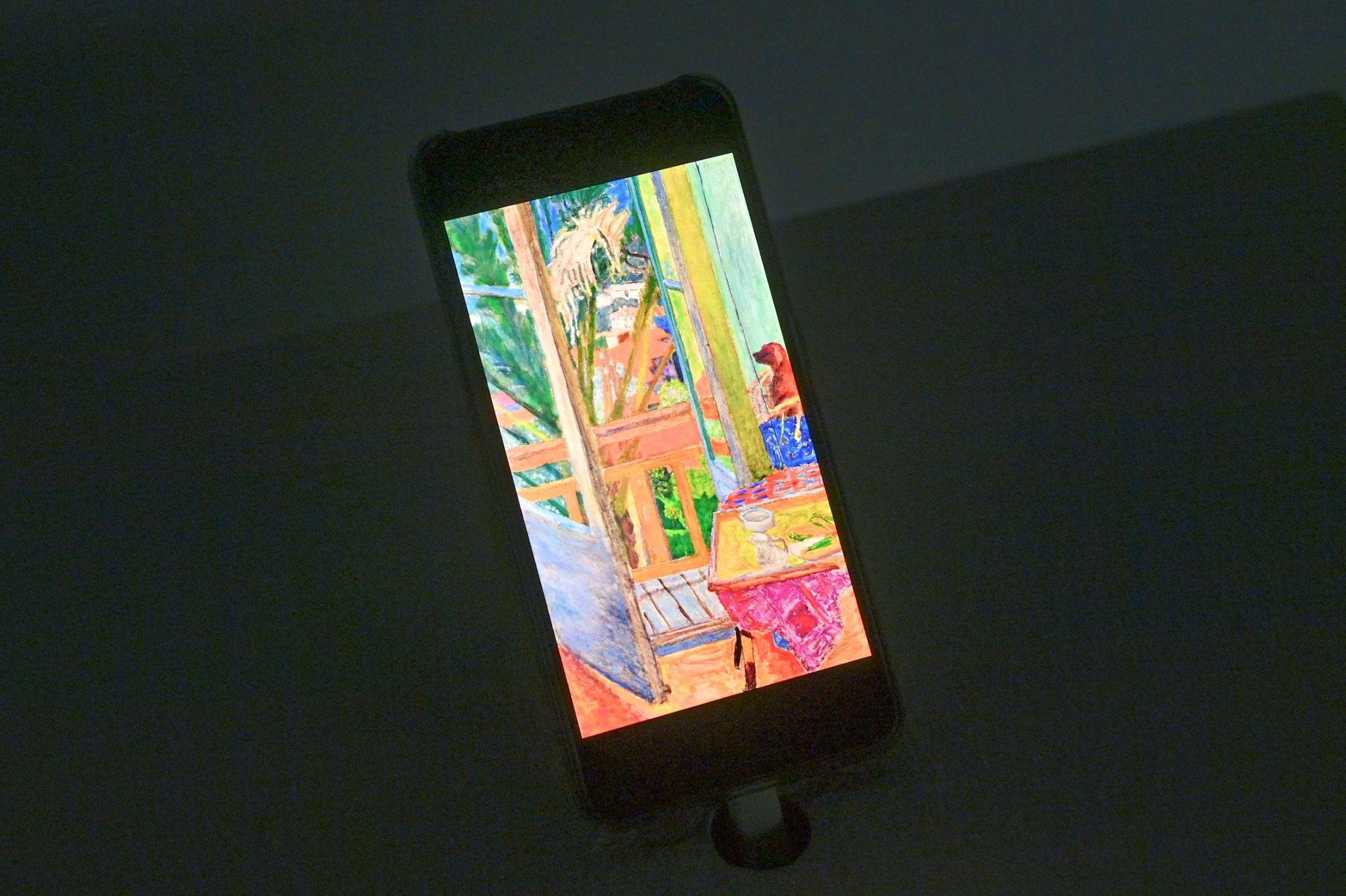 """""""Ngoài"""" và """"trong"""" ở triển lãm của Claude Monet và Pierre Bonnaer tại VCCA  - Ảnh 9"""