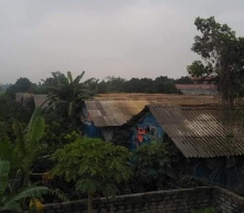 Ô nhiễm từ trang trại gà: Người dân phải mắc màn ăn cơm - Ảnh 1