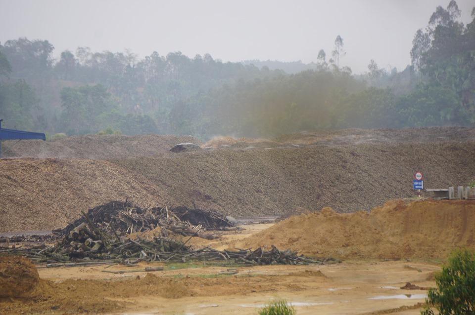 Người dân  'kêu trời' vì nhà máy chế biến gỗ gây ô nhiễm? - Ảnh 2