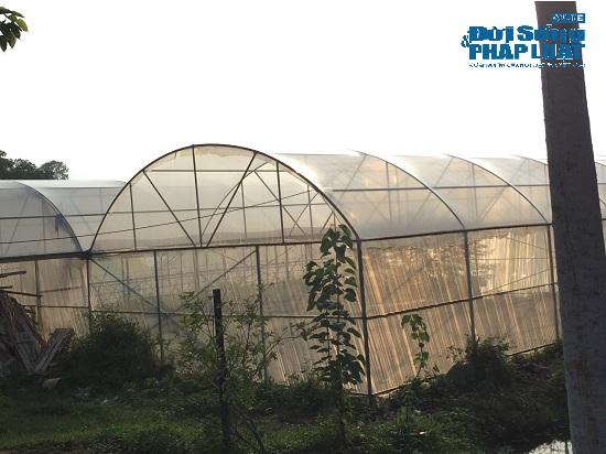 """Đột nhập """"trang trại 300 tỷ"""" của sư thầy Thích Thanh Toàn dưới chân núi Tam Đảo - Ảnh 9"""