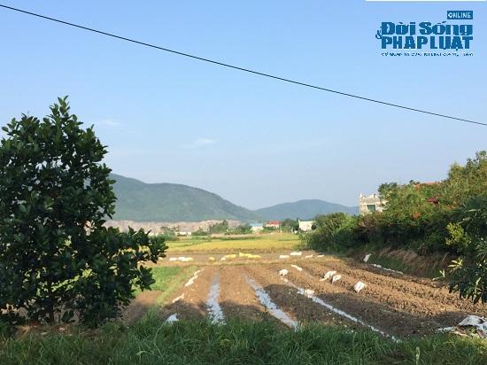 """Đột nhập """"trang trại 300 tỷ"""" của sư thầy Thích Thanh Toàn dưới chân núi Tam Đảo - Ảnh 4"""