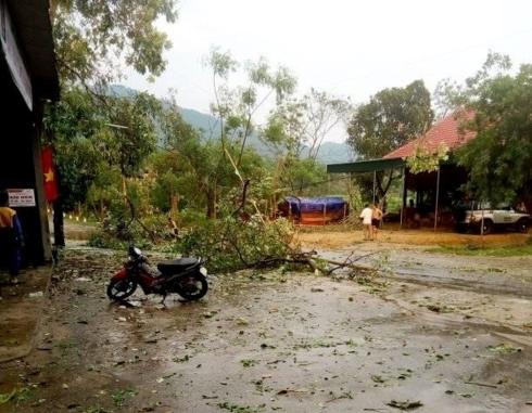 Nghệ An: Lốc xoáy kèm mưa đá, hơn 50 nhà dân bị tốc mái - Ảnh 1