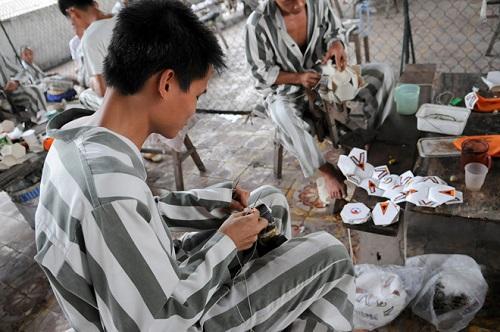 ĐBQH nói về tổ chức cho phạm nhân lao động ngoài trại giam - Ảnh 1