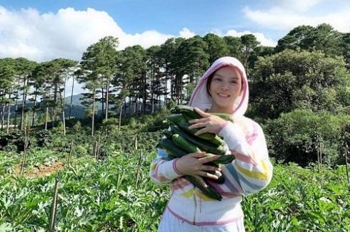 Lý Nhã Kỳ mua 50 hecta đất đồi Đà Lạt để trồng rau, nuôi gà, trải nghiệm cuộc sống mới - Ảnh 1