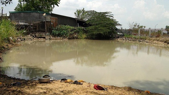 Khánh Hòa: Rủ nhau tắm ao, 4 anh em họ đuối nước tử vong thương tâm - Ảnh 1
