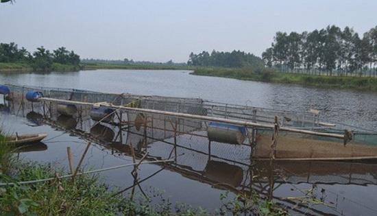 Nghệ An: Tá hỏa phát hiện thi thể người đàn ông bị mắc vào lưới đánh cá - Ảnh 1