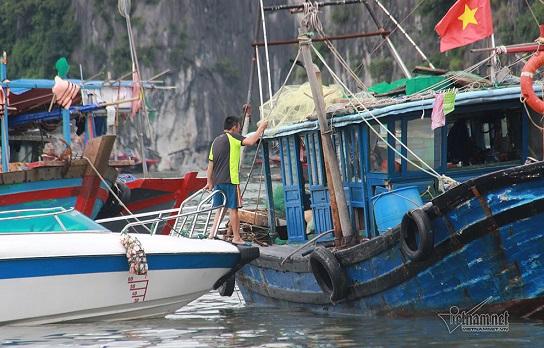 Bão số 3 chuẩn bị đổ bộ, các tỉnh Quảng Ninh, Thái Bình gấp rút chuẩn bị ứng phó - Ảnh 2
