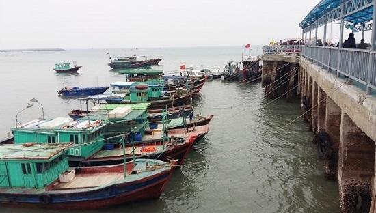 Bão số 3 chuẩn bị đổ bộ, các tỉnh Quảng Ninh, Thái Bình gấp rút chuẩn bị ứng phó - Ảnh 4