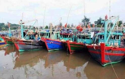 Bão số 3 chuẩn bị đổ bộ, các tỉnh Quảng Ninh, Thái Bình gấp rút chuẩn bị ứng phó - Ảnh 5