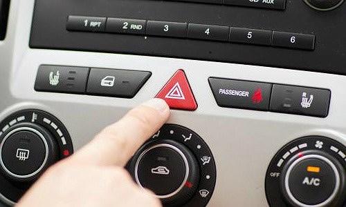 Chuyên gia hướng dẫn kỹ năng thoát hiểm cho trẻ khi ở một mình trên ô tô - Ảnh 2