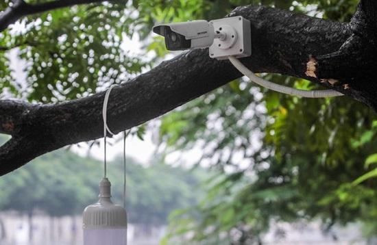 Cá Koi trên sông Tô Lịch đột ngột chết: Công ty JVE lắp đặt thêm camera theo dõi - Ảnh 1