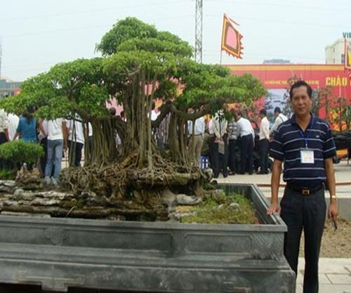 """Siêu cây """"Chiến thắng Bạch Đằng"""" được định giá 3 triệu đô của đại gia Hải Phòng khiến nhiều người choáng váng - Ảnh 7"""