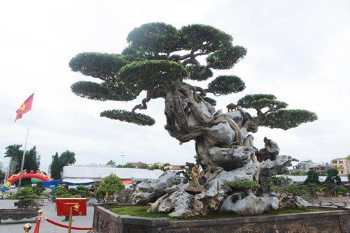 """Huyền thoại sanh cổ ký đá """"Phù Đổng Thiên Vương"""" kỳ vĩ nhất Việt Nam - Ảnh 7"""
