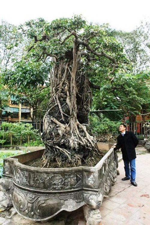 """Huyền thoại sanh cổ ký đá """"Phù Đổng Thiên Vương"""" kỳ vĩ nhất Việt Nam - Ảnh 9"""