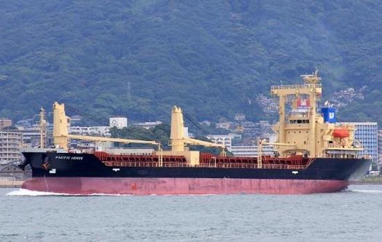 Cách ly 10 thuyền viên tàu Pacific Horse từ Hồng Kông về Quảng Bình - Ảnh 1