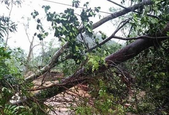 Một người tử vong, hàng ngàn ngôi nhà ở miền núi phía Bắc bị tàn phá vì mưa lớn - Ảnh 2