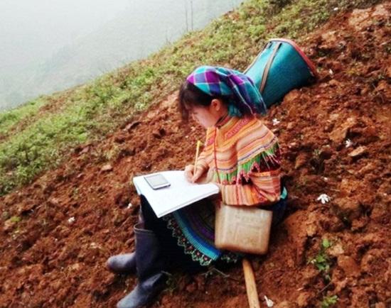 Học sinh vùng cao dựng lán, đào củ rừng kiếm tiền mua thẻ điện thoại để học online trong mùa dịch - Ảnh 9