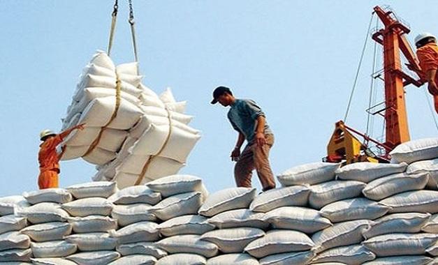 Phó Thủ tướng yêu cầu làm rõ vụ hải quan mở tờ khai xuất khẩu gạo lúc nửa đêm - Ảnh 1