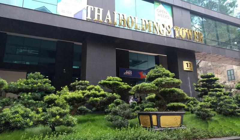 Thaiholding thâu tóm 66% vốn Thaigroup của bầu Thụy - Ảnh 1