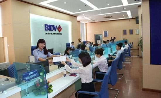 BIDV rao bán khoản nợ hàng trăm tỷ của Xây dựng Nam Sơn - Ảnh 1