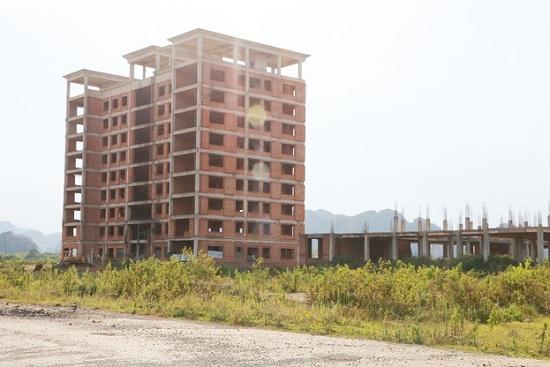 Cận cảnh dự án đại học Hoa Lư hơn 400 tỷ đồng cả thập kỷ vẫn bỏ hoang, thành nơi chăn bò, đổ phế thải - Ảnh 1