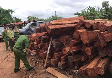 """Gia Lai: Bắt giam đối tượng mua gỗ lậu """"khủng"""" rồi bán cho doanh nghiệp tư nhân - Ảnh 1"""