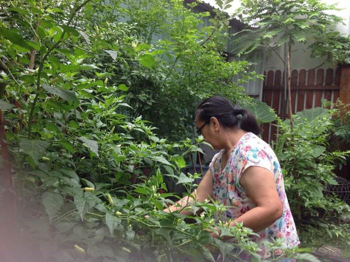 Hà Tăng sống trong biệt thự dát vàng nhưng nhà bố mẹ đẻ lại vô cùng giản dị - Ảnh 14