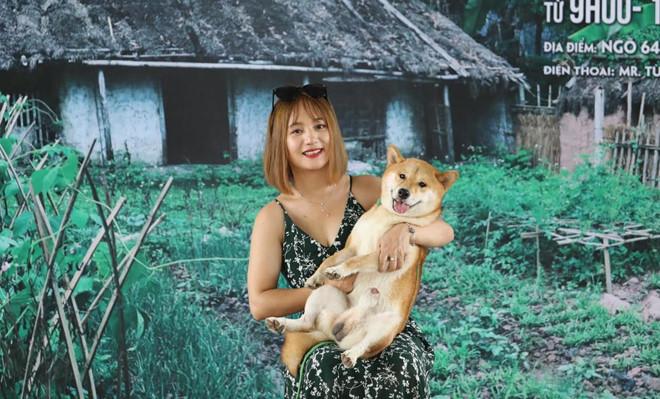 """Chú chó Nhật trúng tuyển phim """"Cậu Vàng"""" có đặc điểm gì nổi bật? - Ảnh 1"""