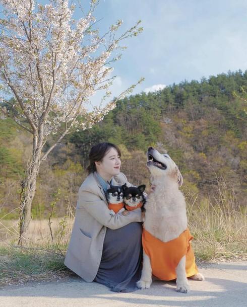 Lý do Goo Hye Sun tuyên bố rút khỏi làng giải trí sau ồn ào ly hôn chồng trẻ  - Ảnh 1