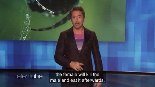 """""""Iron Man"""" Robert Downey Jr. khiến khán giả bức xúc khi so sánh Taylor Swift với loài nhện độc - Ảnh 1"""