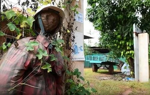 Nông dân Campuchia dùng bù nhìn để ngăn chặn COVID-19 - Ảnh 1