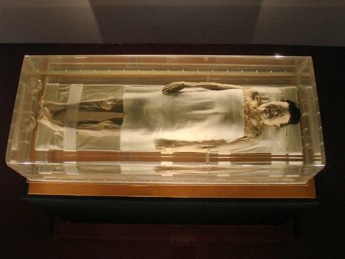 Xác ướp của phu nhân tể tướng sau 2.100 năm vẫn nguyên vẹn - Ảnh 1