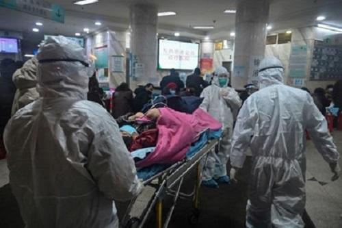 Tình hình dịch virus corona ngày 8/2: Hơn 700 người tử vong, nghi ngờ vật chủ trung gian mới - Ảnh 1