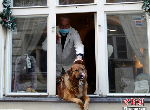 Nụ cười lạc quan bên khung cửa sổ của người dân châu Âu giữa đại dịch Covid-19 - Ảnh 6