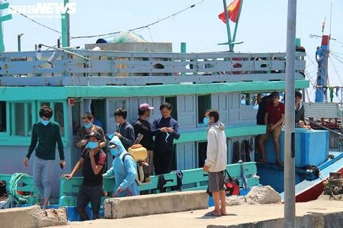 """""""Giải cứu"""" hải sản cho hộ gia đình cứu tàu gặp nạn tại Hoàng Sa - Ảnh 1"""
