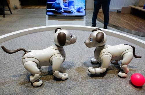 """2 robot huyền thoại được xem là cách mạng công nghệ, từng làm """"điên đảo"""" thế giới một thời - Ảnh 11"""