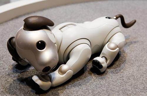 """2 robot huyền thoại được xem là cách mạng công nghệ, từng làm """"điên đảo"""" thế giới một thời - Ảnh 12"""