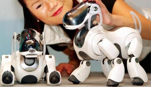 """2 robot huyền thoại được xem là cách mạng công nghệ, từng làm """"điên đảo"""" thế giới một thời - Ảnh 13"""