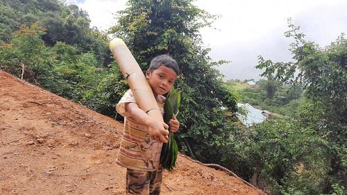 """Xúc động hình ảnh cậu bé 8 tuổi vác măng rừng """"siêu to khổng lồ"""" ủng hộ người dân vùng dịch - Ảnh 1"""