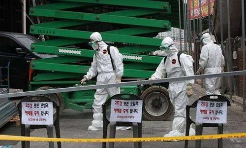 Hàn Quốc: Số ca nhiễm COVID-19 tăng mạnh, Seoul chỉ còn 19 giường cho bệnh nhân tiên lượng nặng  - Ảnh 1