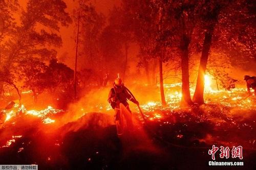 Chùm ảnh: Thảm họa cháy rừng ở California, diện tích rừng bị phá hủy bằng 10 thành phố New York - Ảnh 1