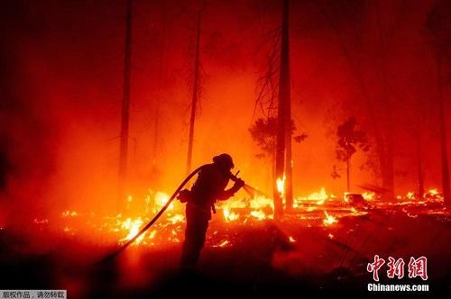 Chùm ảnh: Thảm họa cháy rừng ở California, diện tích rừng bị phá hủy bằng 10 thành phố New York - Ảnh 5