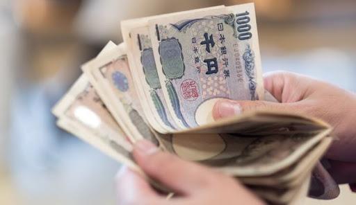 Cải thiện kinh tế, giải quyết việc làm nhờ xuất khẩu lao động Nhật Bản - Ảnh 2