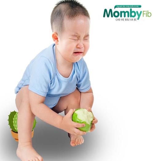 Phát hiện chất tiền sinh trong hỗ trợ điều trị dứt điểm táo bón ở mẹ bầu và trẻ nhỏ - Ảnh 1