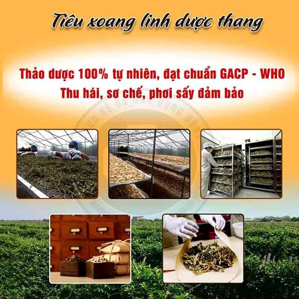 Trung tâm Thừa kế và Ứng dụng Đông y Việt Nam chữa viêm xoang có tốt không? - Ảnh 6