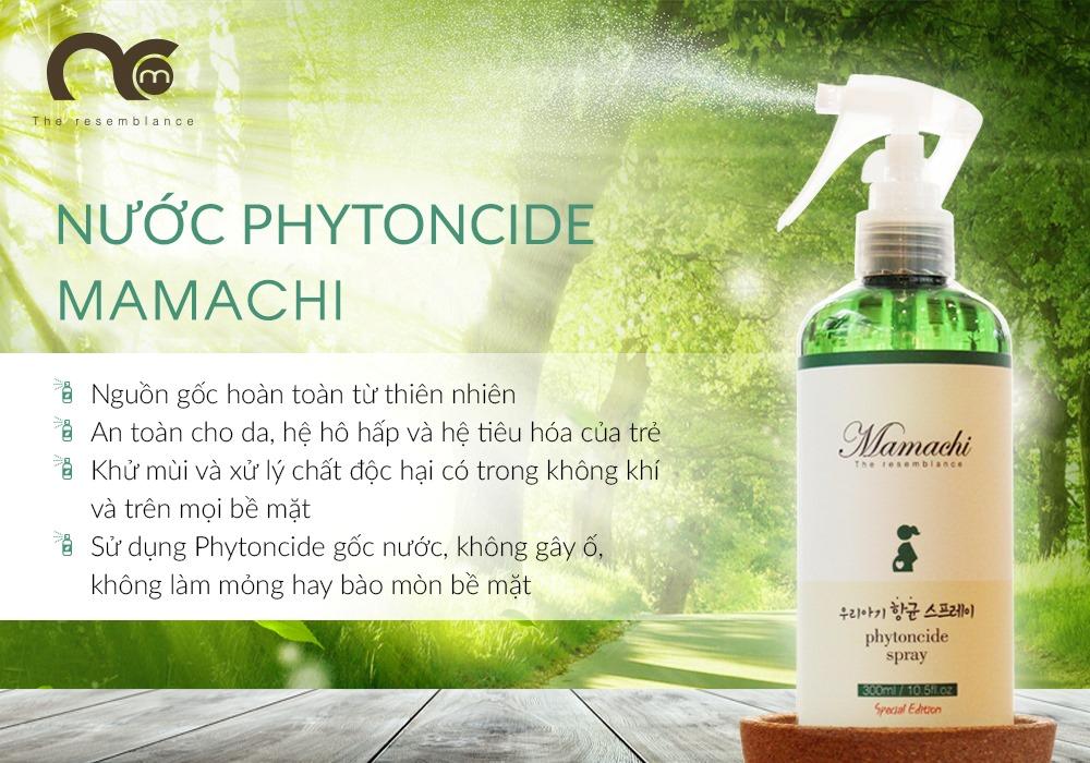 Phytoncide: Chất kháng sinh tự nhiên với công dụng ít ai biết - Ảnh 1