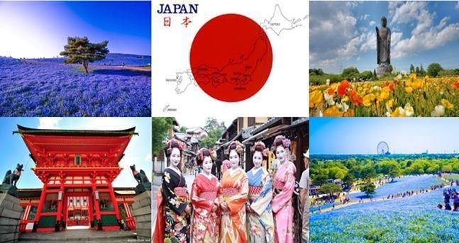 Phương pháp giáo dục tiên tiến Nhật Bản tại Hoàng Long - Hanoi Tokyo - Ảnh 5