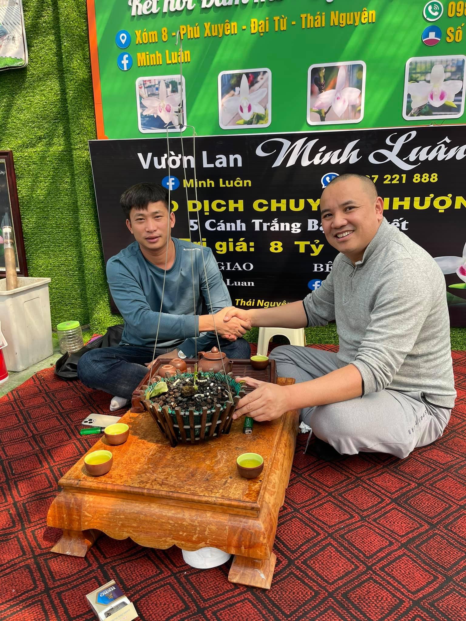 Nghệ nhân hoa lan Ngô Minh Luân chia sẻ về những khó khăn khi khởi nghiệp từ con số 0 - Ảnh 3